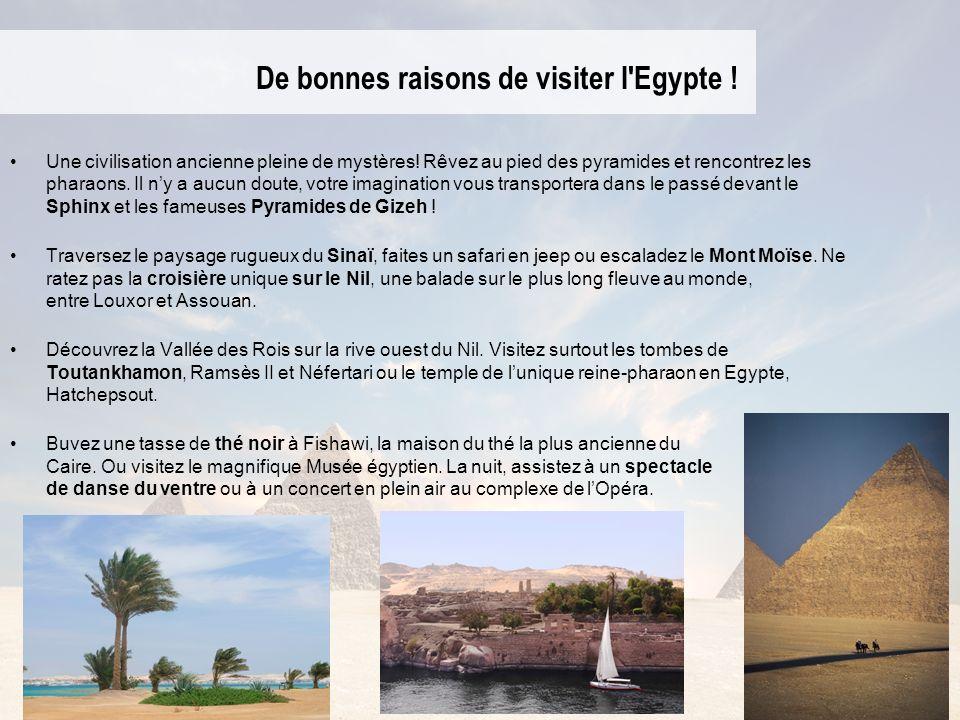 De bonnes raisons de visiter l'Egypte ! Une civilisation ancienne pleine de mystères! Rêvez au pied des pyramides et rencontrez les pharaons. Il ny a