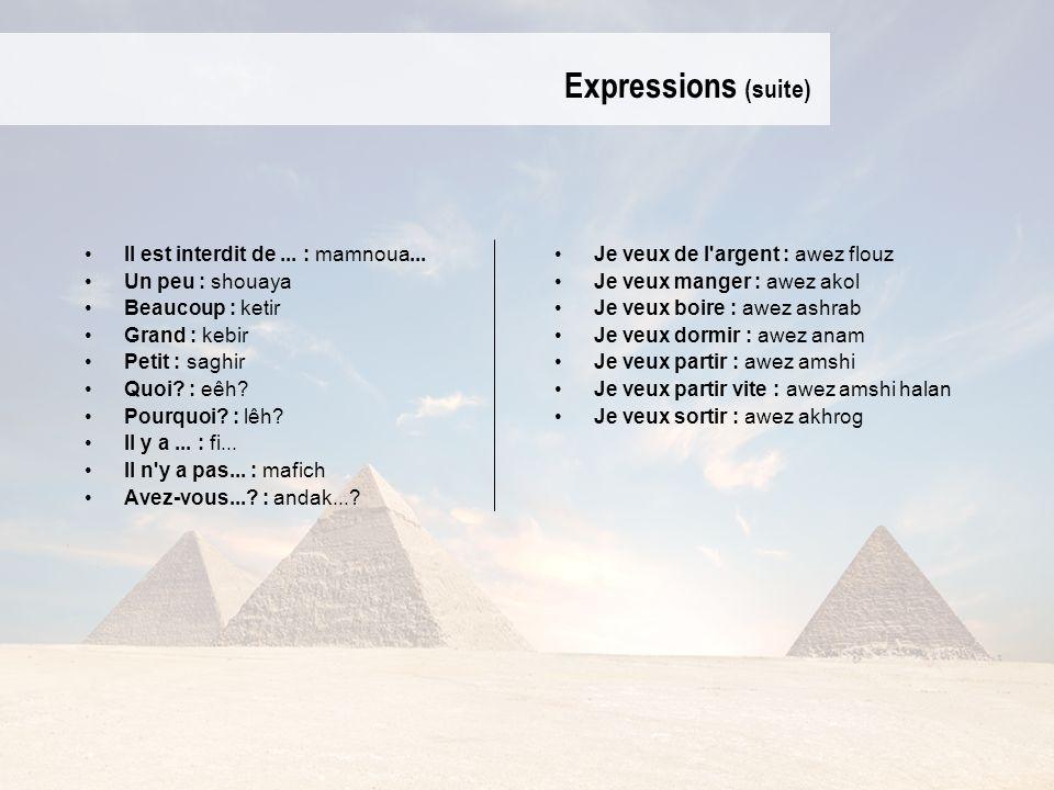Expressions (suite) Il est interdit de... : mamnoua... Un peu : shouaya Beaucoup : ketir Grand : kebir Petit : saghir Quoi? : eêh? Pourquoi? : lêh? Il