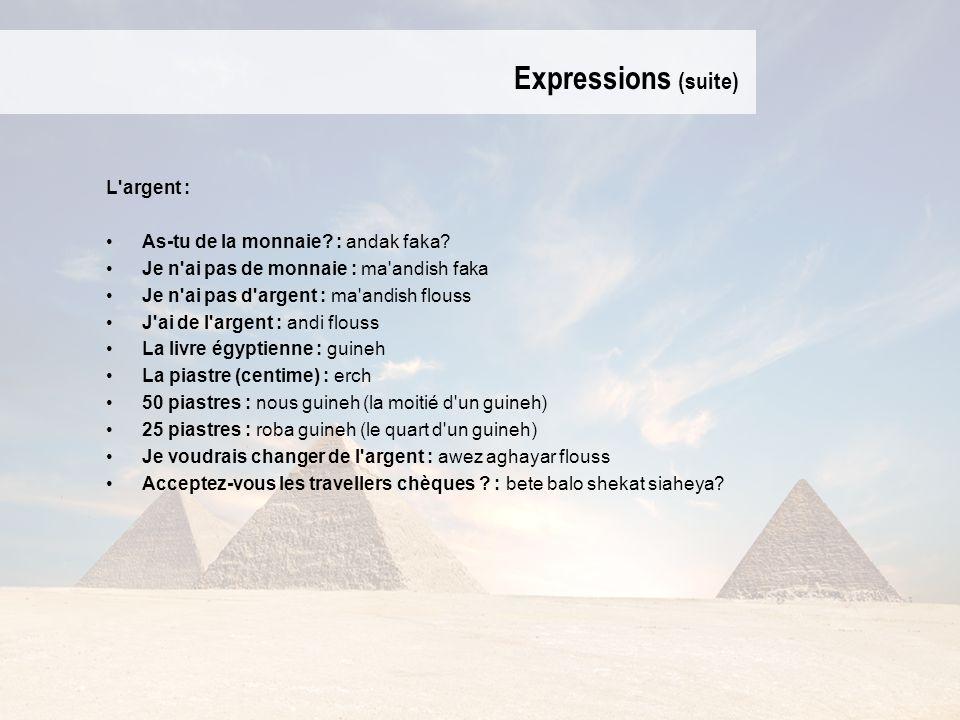 Expressions (suite) L'argent : As-tu de la monnaie? : andak faka? Je n'ai pas de monnaie : ma'andish faka Je n'ai pas d'argent : ma'andish flouss J'ai