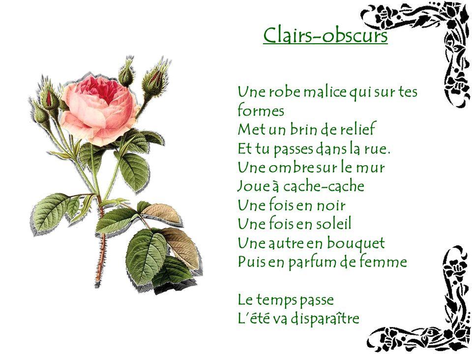 Florilège De la rose au jasmin Dylang-ylang au frangipanier De la pensée à lœillet Du muguet à la jonquille Fleur par fleur ou en bouquet De parfum en