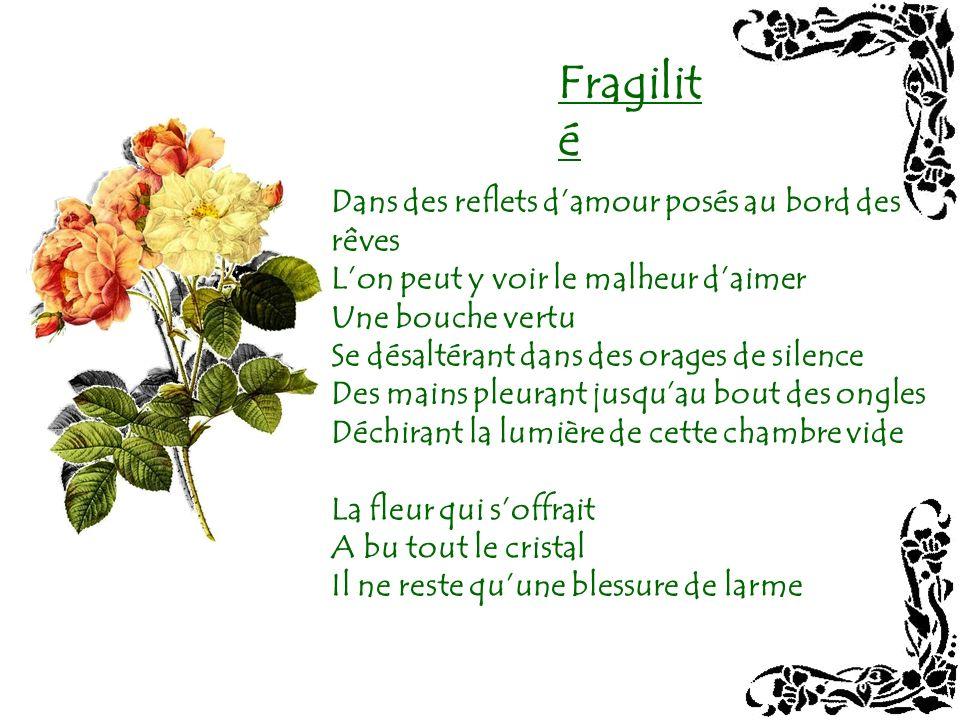 La délicatesse des roses de Redouté pour accompagner et magnifier la délicatesse des poèmes de Pierre Comte… Un accord de beauté et dharmonie…