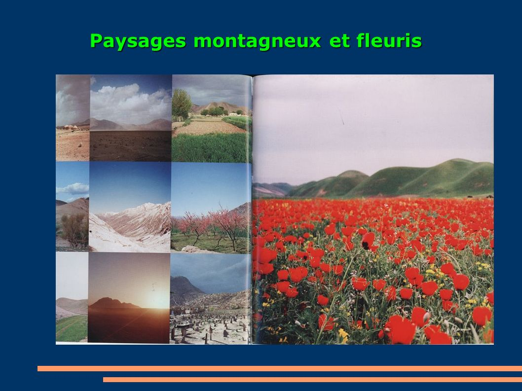 Paysages montagneux et fleuris Paysages montagneux et fleuris