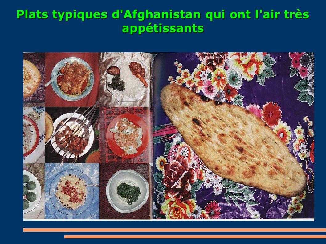 Plats typiques d'Afghanistan qui ont l'air très appétissants