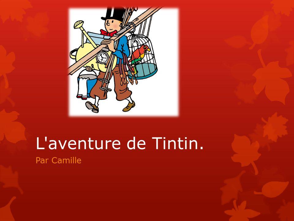 L'aventure de Tintin. Par Camille
