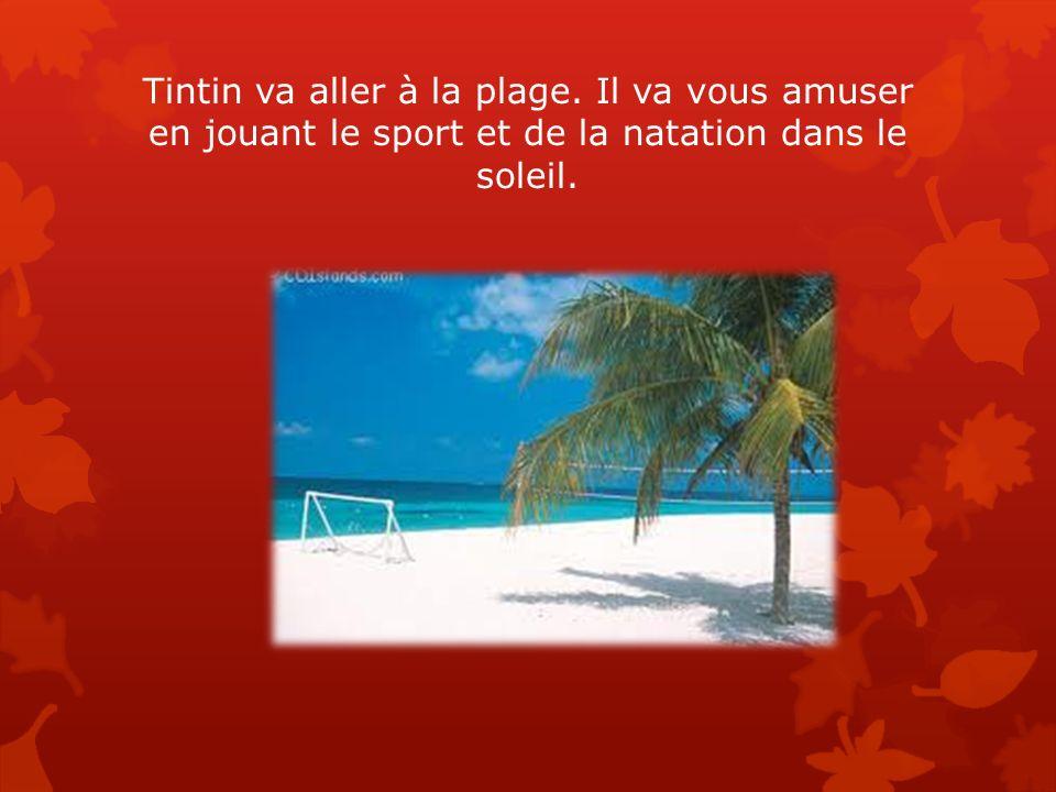 Tintin va aller à la plage. Il va vous amuser en jouant le sport et de la natation dans le soleil.