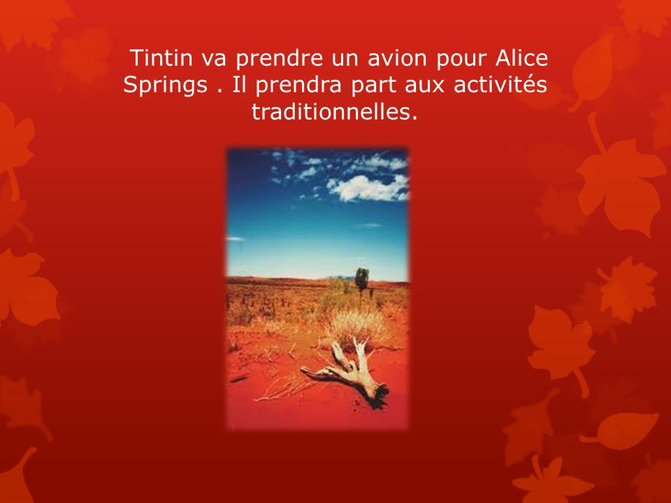 Tintin va prendre un avion pour Alice Springs. Il prendra part aux activités traditionnelles.