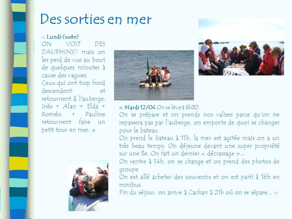 Des sorties en mer « Lundi (suite) ON VOIT DES DAUPHINS!! mais on les perd de vue au bout de quelques minutes à cause des vagues. Ceux qui ont trop fr