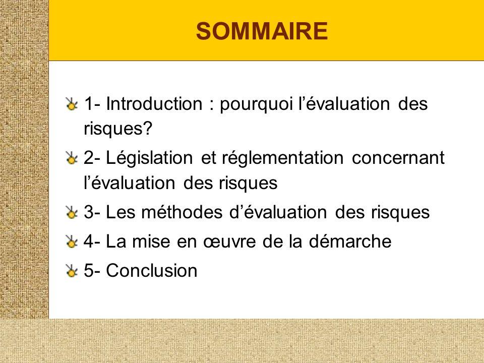 SOMMAIRE 1- Introduction : pourquoi lévaluation des risques.