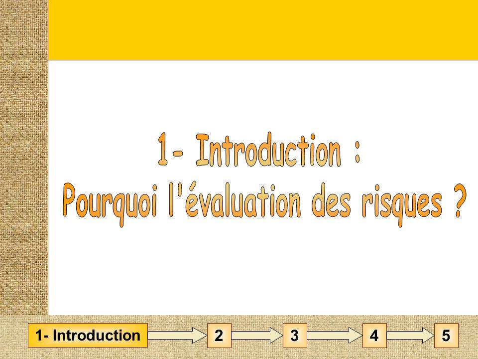 Introduction : Pourquoi lévaluation des risques .