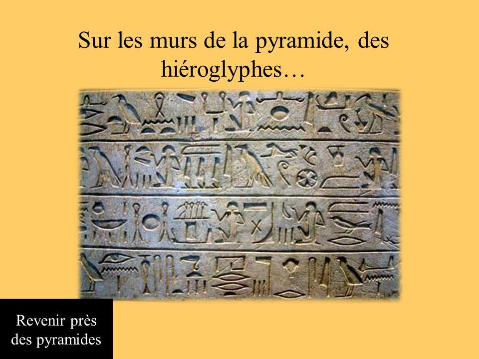 Pas de route, mais des pyramides Chercher une entrée ou un indice Revenir à loasis
