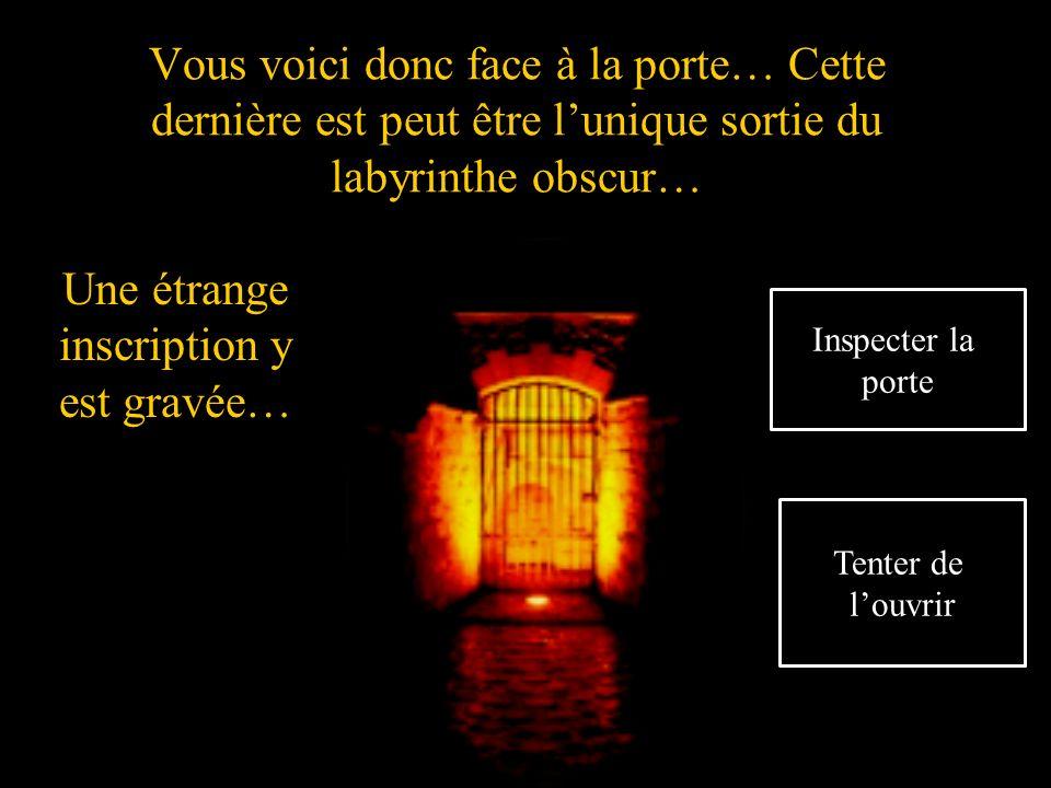 Vous voici donc face à la porte… Cette dernière est peut être lunique sortie du labyrinthe obscur… Une étrange inscription y est gravée… Inspecter la porte Tenter de louvrir