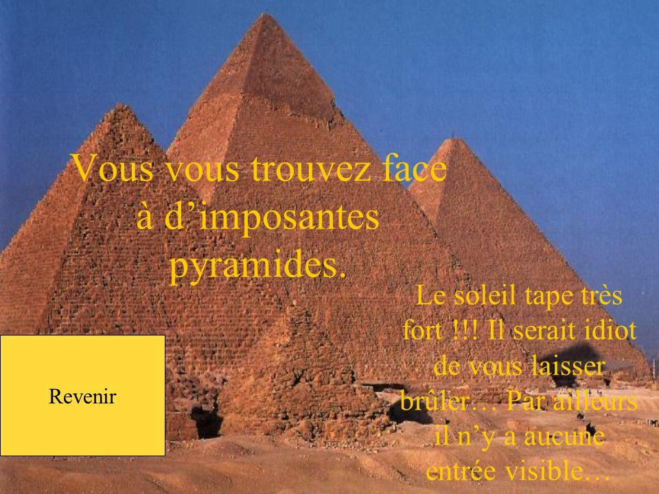 Avec plaisir, mais surtout, ne te rends pas à la pyramide, elle est maudite ! Jy penserais…