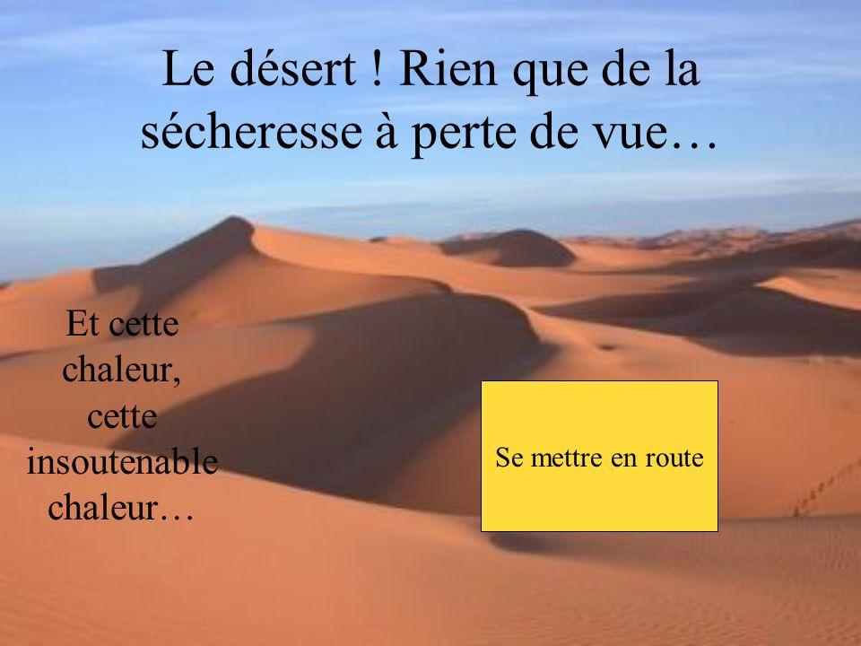 Une forte lumière vous éblouit alors, et sans savoir comment, vous êtes à présent étendu sur le sable dun désert qui sétend à perte de vue… Vous voici maintenant au désert des miracles, celui-ci était pourtant à des centaines de lieues de la porte… Dans un vrombissement, la porte souvre… Regarder autour de soi Se mettre en route