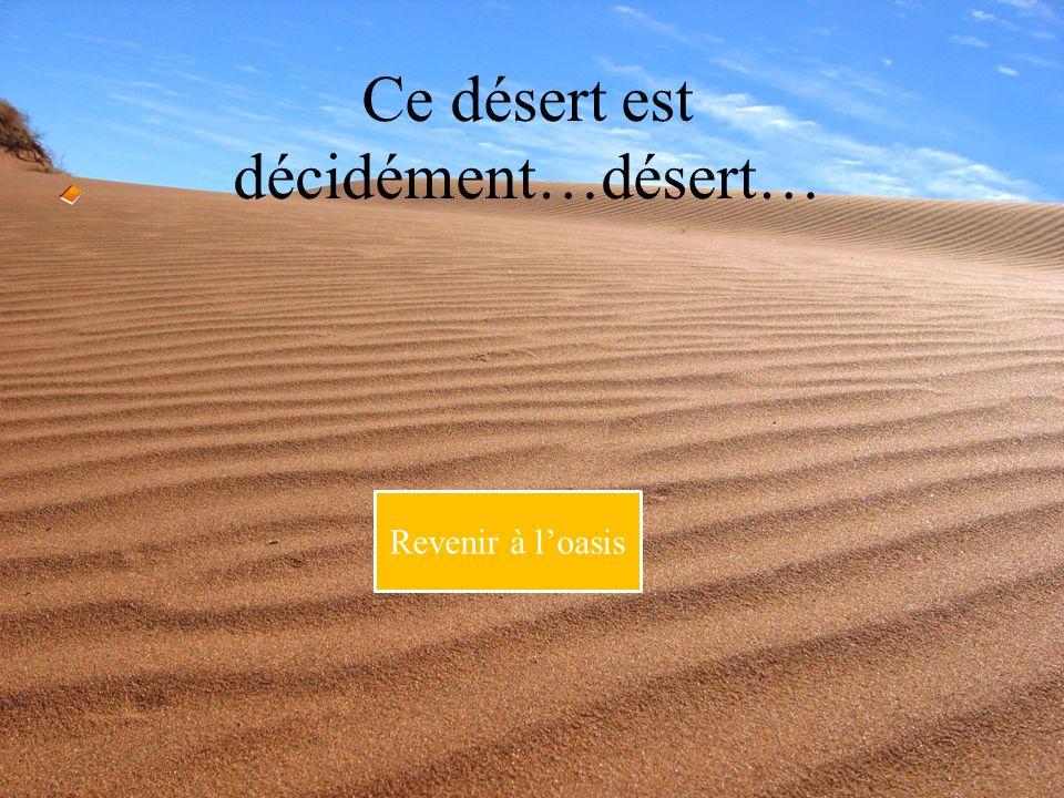 Ce désert est décidément…désert… Revenir à loasis