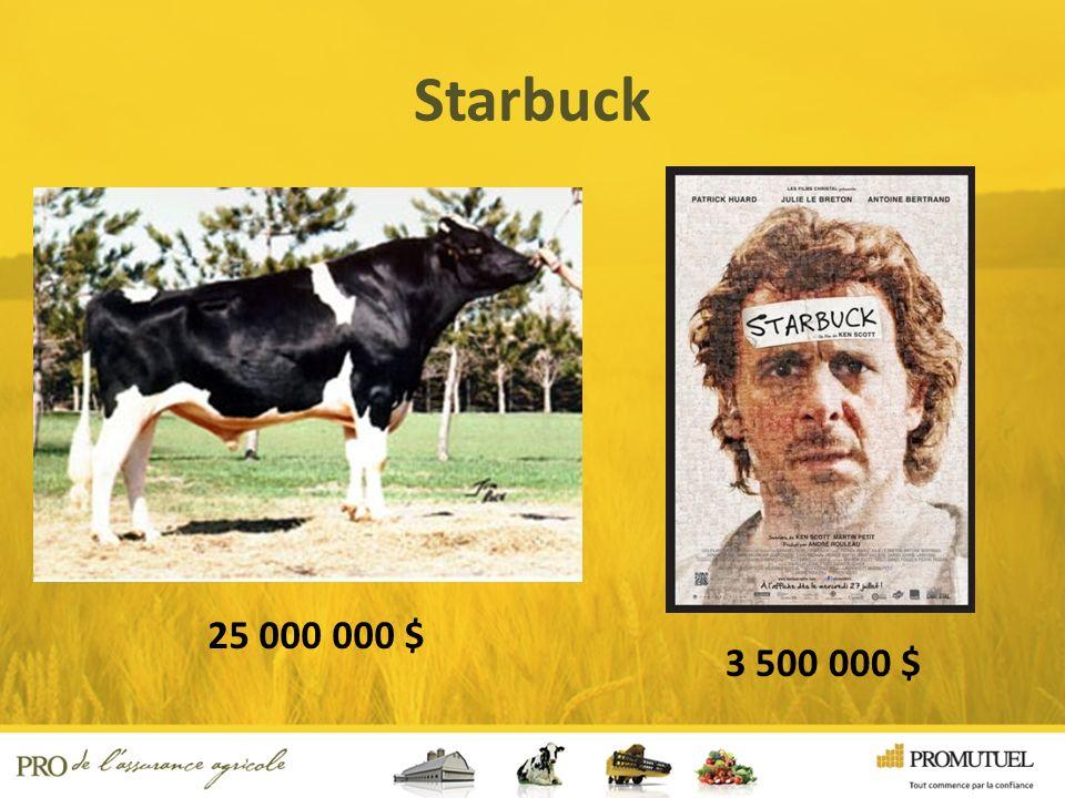 Starbuck 25 000 000 $ 3 500 000 $