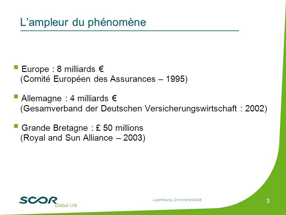 Luxembourg – 24 novembre 2008 3 Lampleur du phénomène Europe : 8 milliards (Comité Européen des Assurances – 1995) Allemagne : 4 milliards (Gesamverba