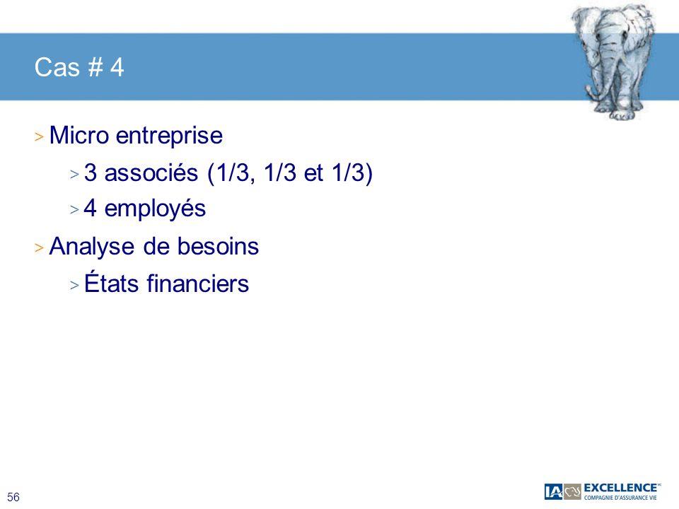 56 Cas # 4 > Micro entreprise > 3 associés (1/3, 1/3 et 1/3) > 4 employés > Analyse de besoins > États financiers