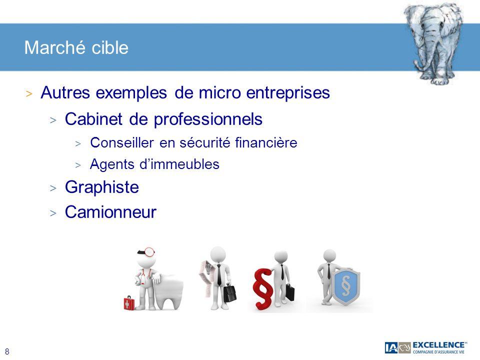 8 Marché cible > Autres exemples de micro entreprises > Cabinet de professionnels > Conseiller en sécurité financière > Agents dimmeubles > Graphiste