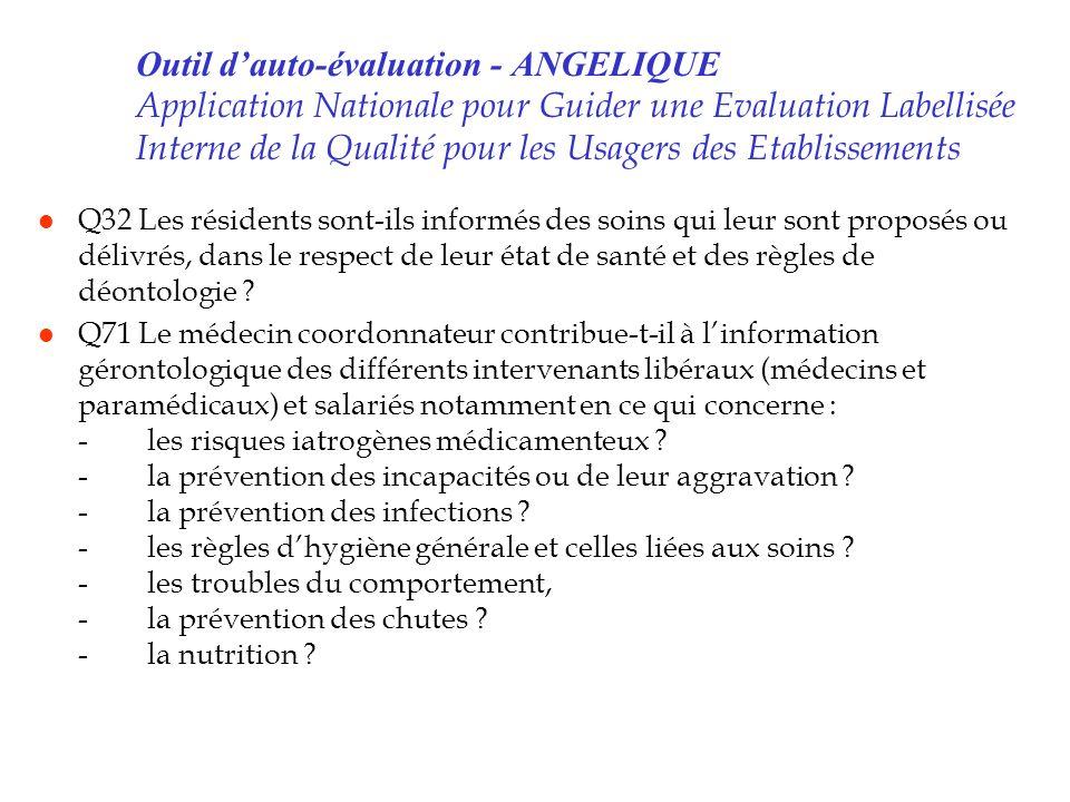 Outil dauto-évaluation - ANGELIQUE Application Nationale pour Guider une Evaluation Labellisée Interne de la Qualité pour les Usagers des Etablissemen