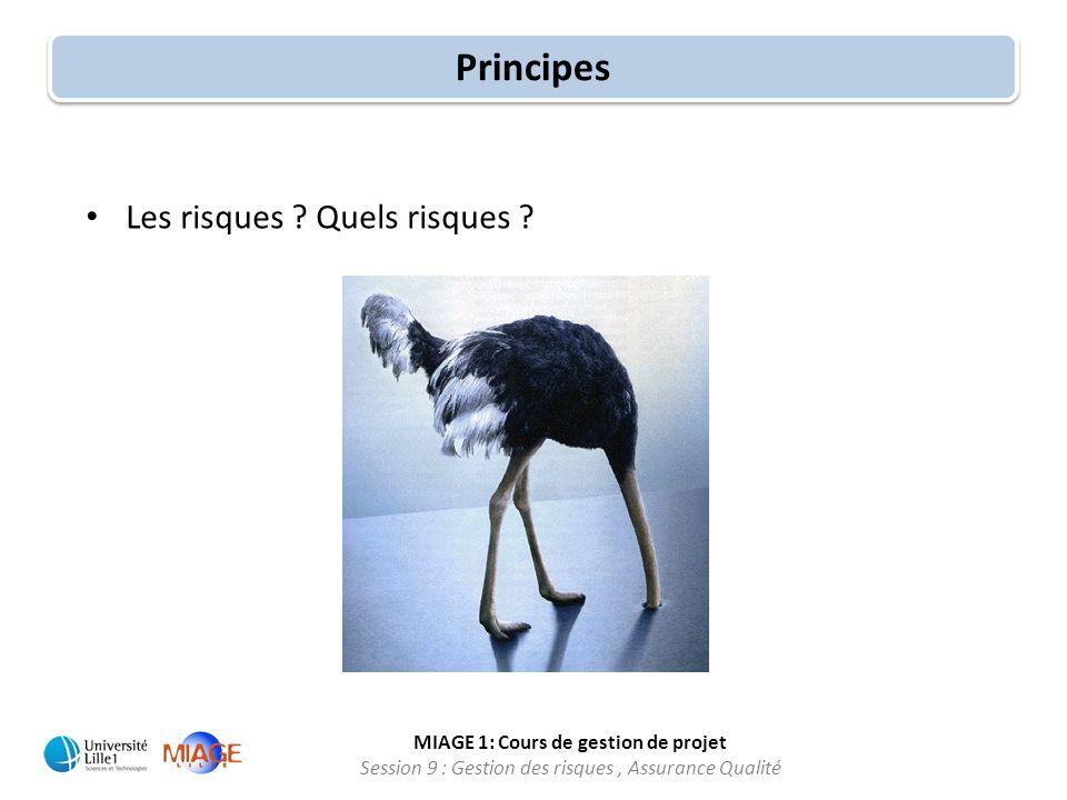 MIAGE 1: Cours de gestion de projet Session 9 : Gestion des risques, Assurance Qualité Les risques ? Quels risques ? Principes