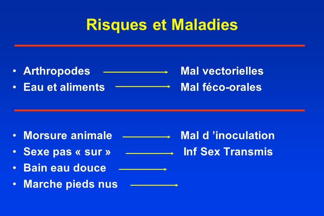 Risques et Maladies ArthropodesMal vectorielles Eau et alimentsMal féco-orales Morsure animaleMal d inoculation Sexe pas « sur » Inf Sex Transmis Bain