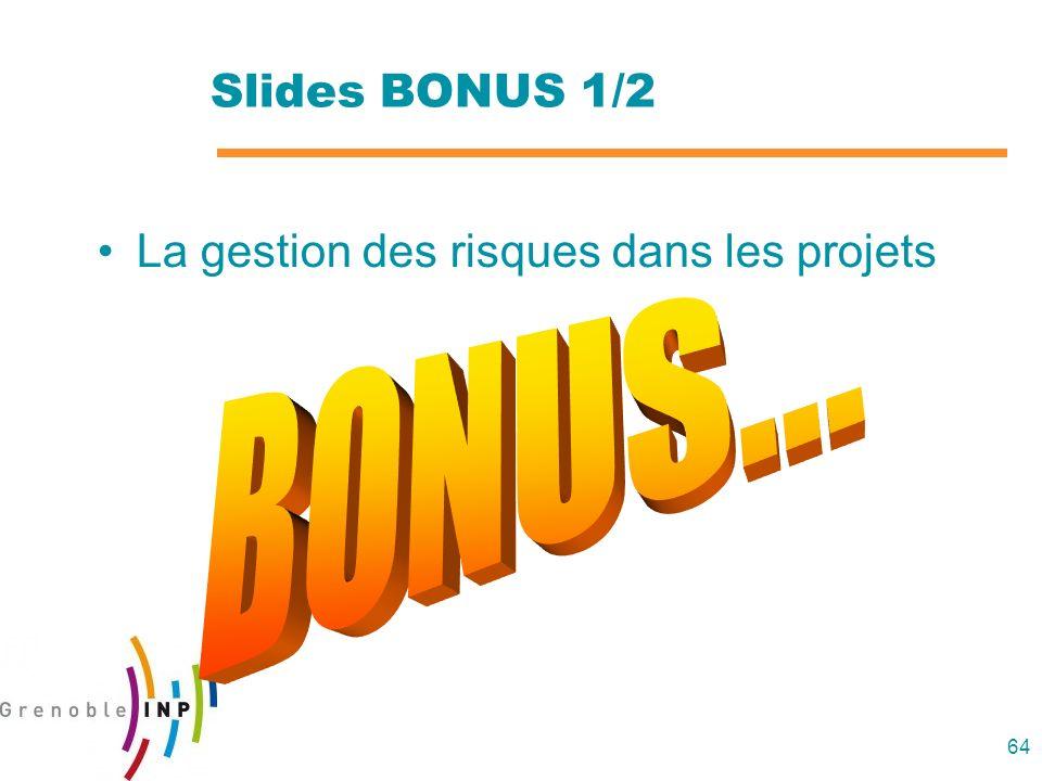 64 Slides BONUS 1/2 La gestion des risques dans les projets