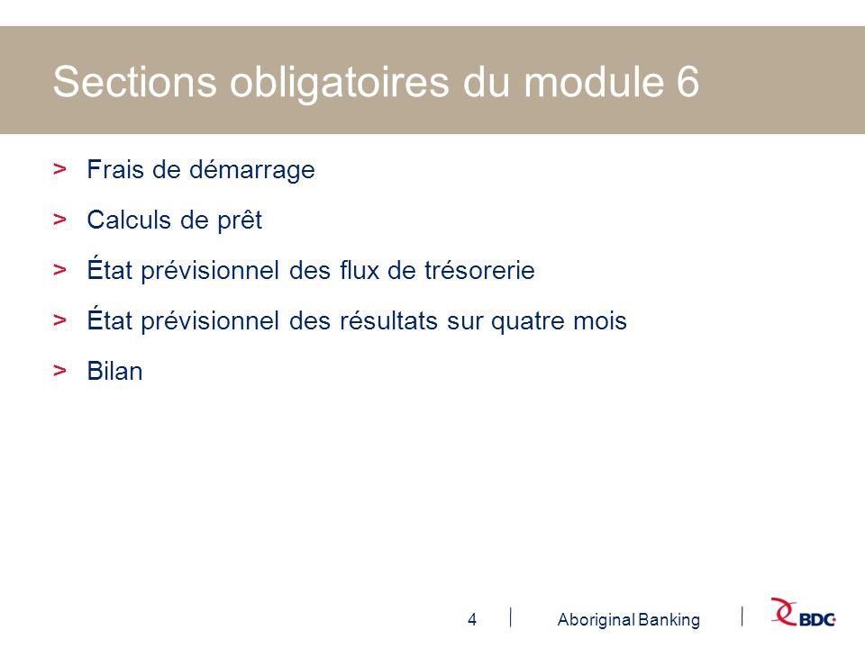 4Aboriginal Banking Sections obligatoires du module 6 >Frais de démarrage >Calculs de prêt >État prévisionnel des flux de trésorerie >État prévisionne