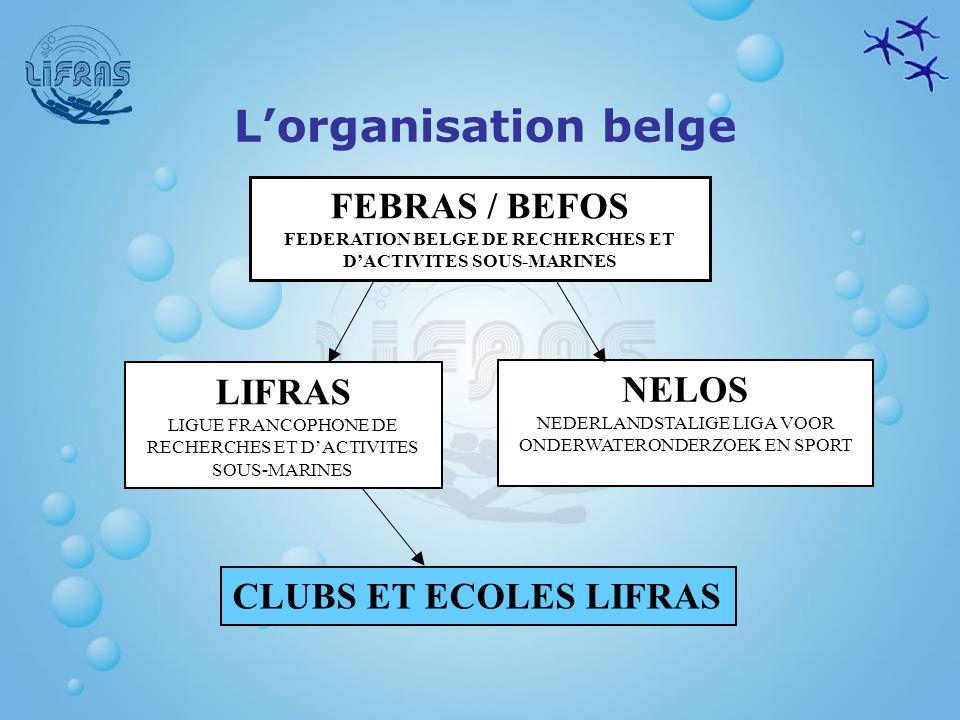 Assurances Responsabilité civile Accidents corporels Assistance – rapatriement Protection juridique En tant que plongeur LIFRAS, la Ligue nous assure en :