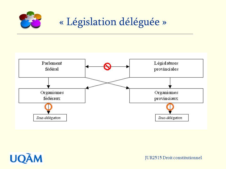 JUR2515 Droit constitutionnel « Législation déléguée »