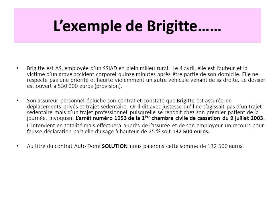 Lexemple de Brigitte…… Brigitte est AS, employée dun SSIAD en plein milieu rural. Le 4 avril, elle est lauteur et la victime dun grave accident corpor