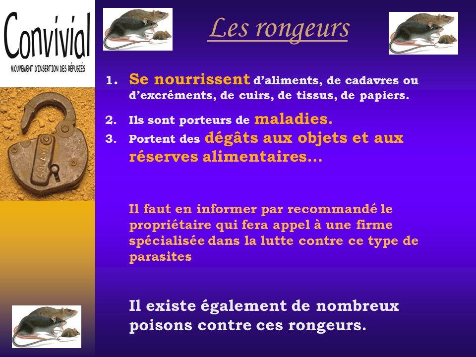 Mesures préventives simples pour éviter les cafards Les cafards ont besoin: -De nourriture -Dun environnement humide -De caches sombres -De chaleur En les privant de ces 4 éléments essentiels, on limite leur intrusion.