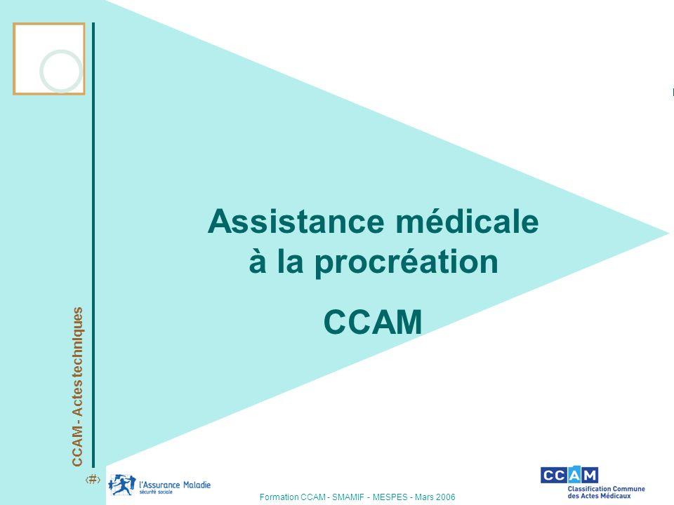 CCAM - Actes techniques 1 Formation CCAM - SMAMIF - MESPES - Mars 2006 Assistance médicale à la procréation CCAM