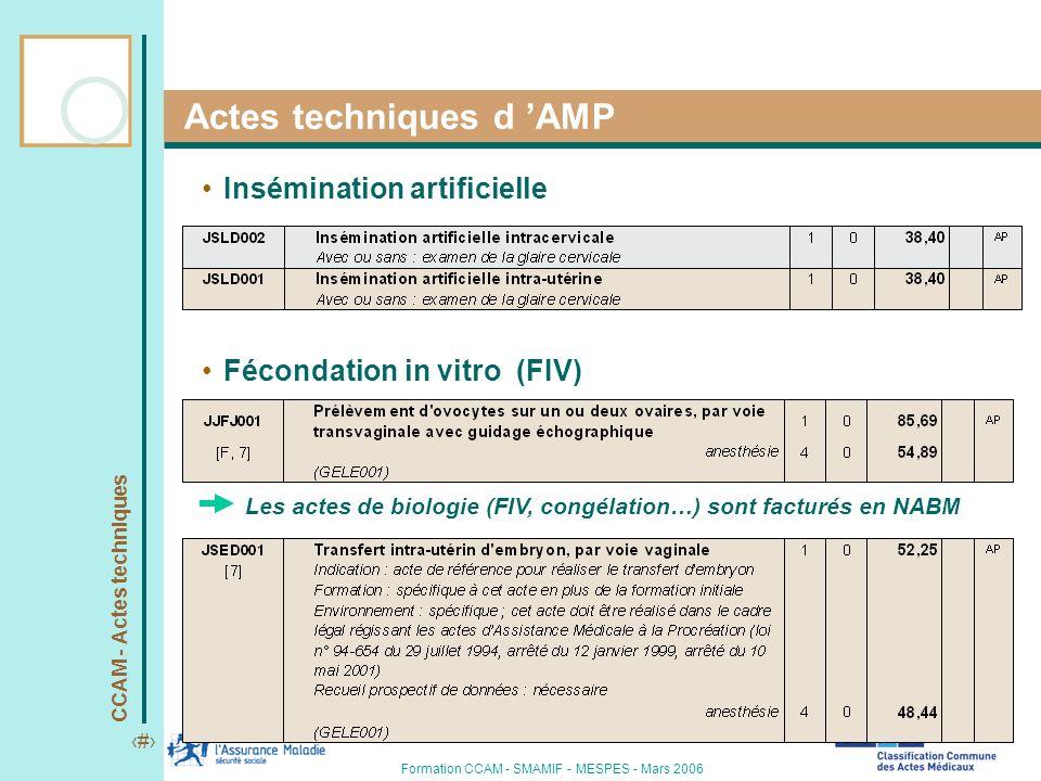 CCAM - Actes techniques 11 Formation CCAM - SMAMIF - MESPES - Mars 2006 Actes techniques d AMP Insémination artificielle Fécondation in vitro (FIV) Le