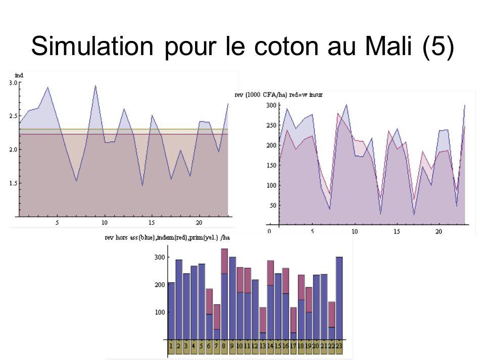 Simulation pour le coton au Mali (5)