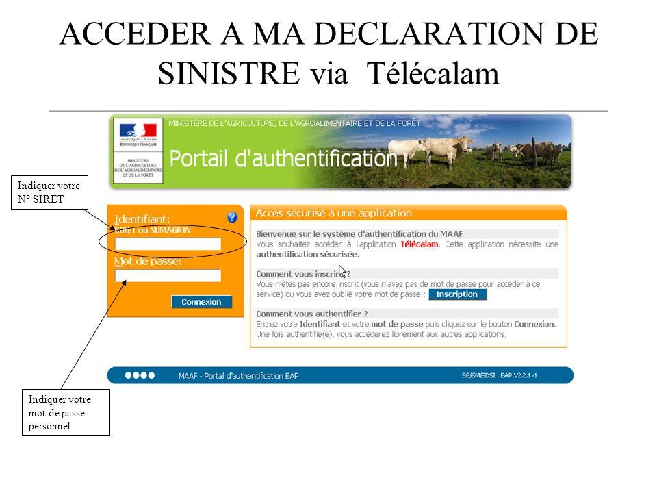 ACCEDER A MA DECLARATION DE SINISTRE via Télécalam Indiquer votre N° SIRET Indiquer votre mot de passe personnel