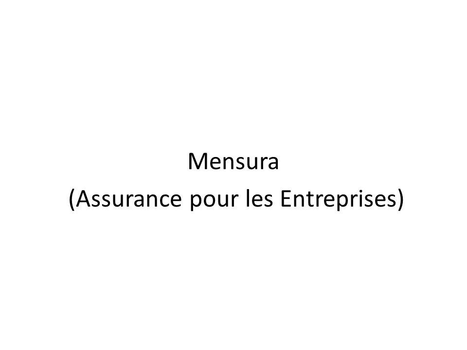 Mensura (Assurance pour les Entreprises)