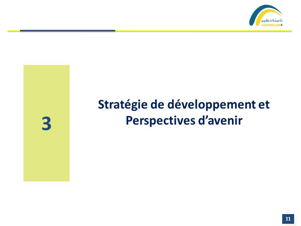 11 3 Stratégie de développement et Perspectives davenir