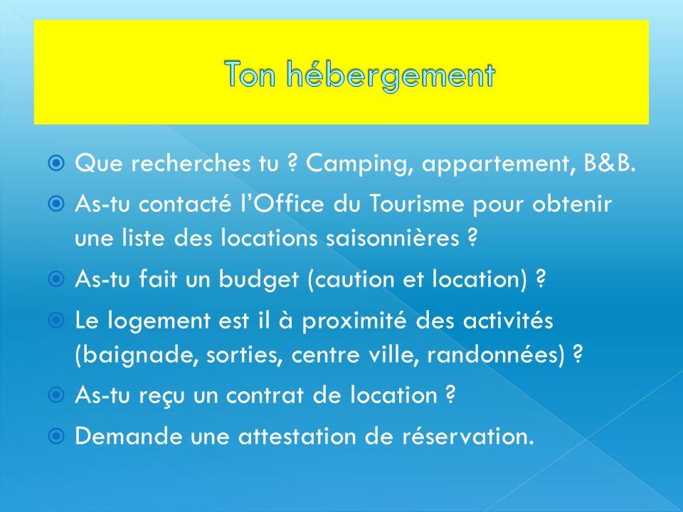 Que recherches tu ? Camping, appartement, B&B. As-tu contacté lOffice du Tourisme pour obtenir une liste des locations saisonnières ? As-tu fait un bu