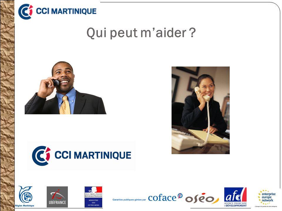 Les Prêts pour lExport (PPE) OSEO : Permettent de financer les PME engageant un programme dinvestissement devant concourir au développement de lentreprise à linternational.
