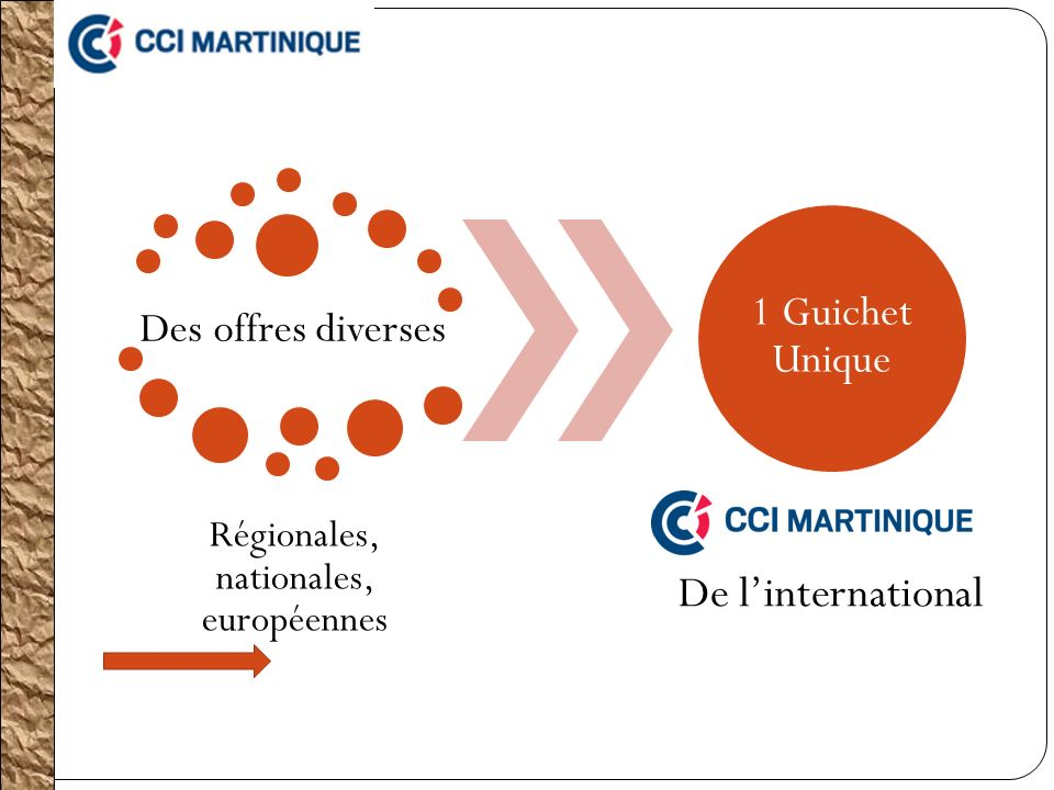 Des offres diverses Régionales, nationales, européennes 1 Guichet Unique De linternational