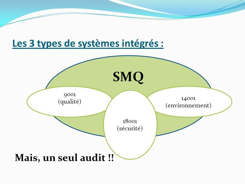 Les 3 types de systèmes intégrés : Mais, un seul audit !.