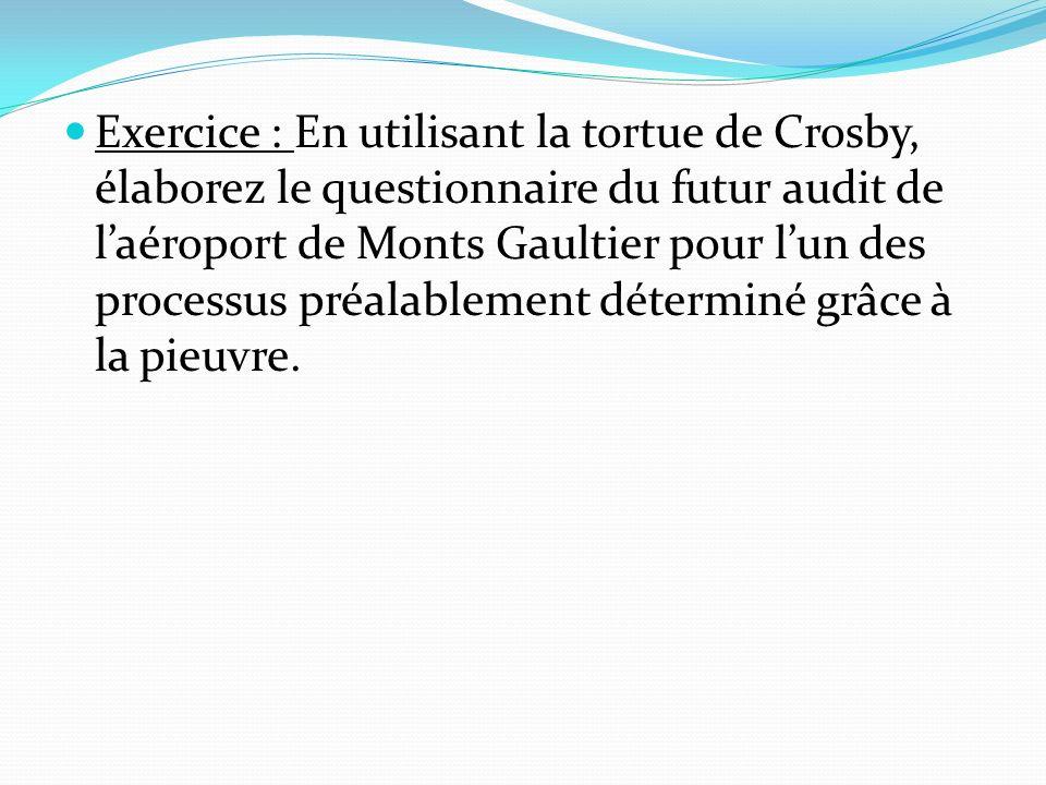 Exercice : En utilisant la tortue de Crosby, élaborez le questionnaire du futur audit de laéroport de Monts Gaultier pour lun des processus préalablement déterminé grâce à la pieuvre.