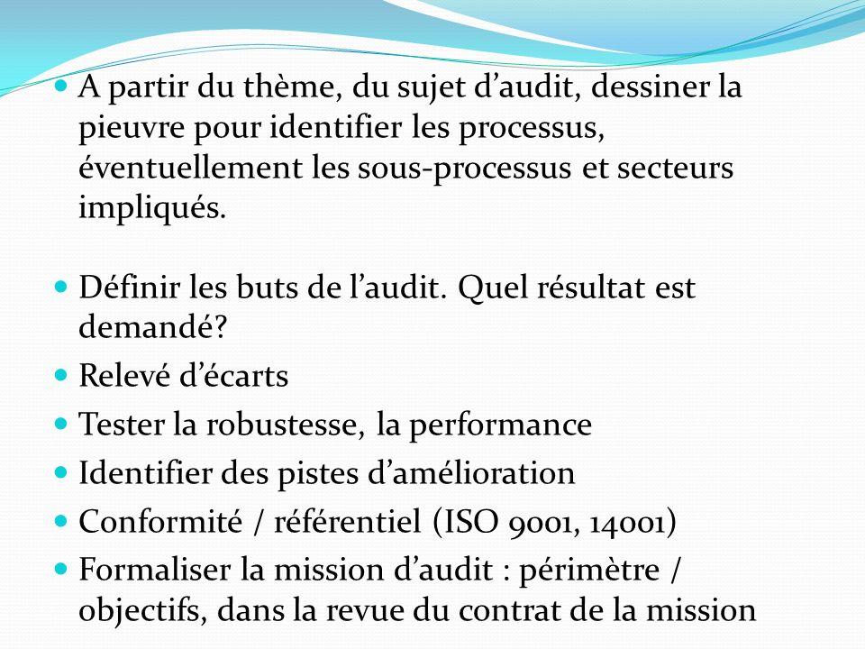 A partir du thème, du sujet daudit, dessiner la pieuvre pour identifier les processus, éventuellement les sous-processus et secteurs impliqués.