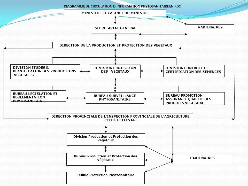 DIAGRAMME DE CIRCULATION DINFORMATION PHYTOSANITAIRE EN RDC Bureau Production et Protection des Végétaux SECRETARIAT GENERAL MINISTERE ET CABINET DU MINISTRE Division Production et Protection des Végétaux Cellule Protection Phytosanitaire PARTENAIRES DIRECTION DE LA PRODUCTION ET PROTECTION DES VEGETAUX DIVISION ETUDES & PLANIFICATION DES PRODUCTIONS VEGETALES DIVISION PROTECTION DES VEGETAUX DIVISION CONTROLE ET CERTIFICATION DES SEMENCES BUREAU LEGISLATION ET REGLEMENTATION PHYTOSANITAIRE BUREAU SURVEILLANCE PHYTOSANITAIRE BUREAU PROMOTION, ASSURANCE QUALITE DES PRODUITS VEGETAUX DIRECTION PROVINCIALE DE LINSPECTION PROVINCIALE DE LAGRICULTURE, PECHE ET ELEVAGE