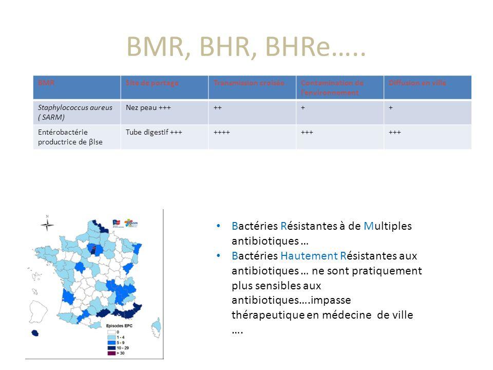 BMR, BHR, BHRe….. Bactéries Résistantes à de Multiples antibiotiques … Bactéries Hautement Résistantes aux antibiotiques … ne sont pratiquement plus s