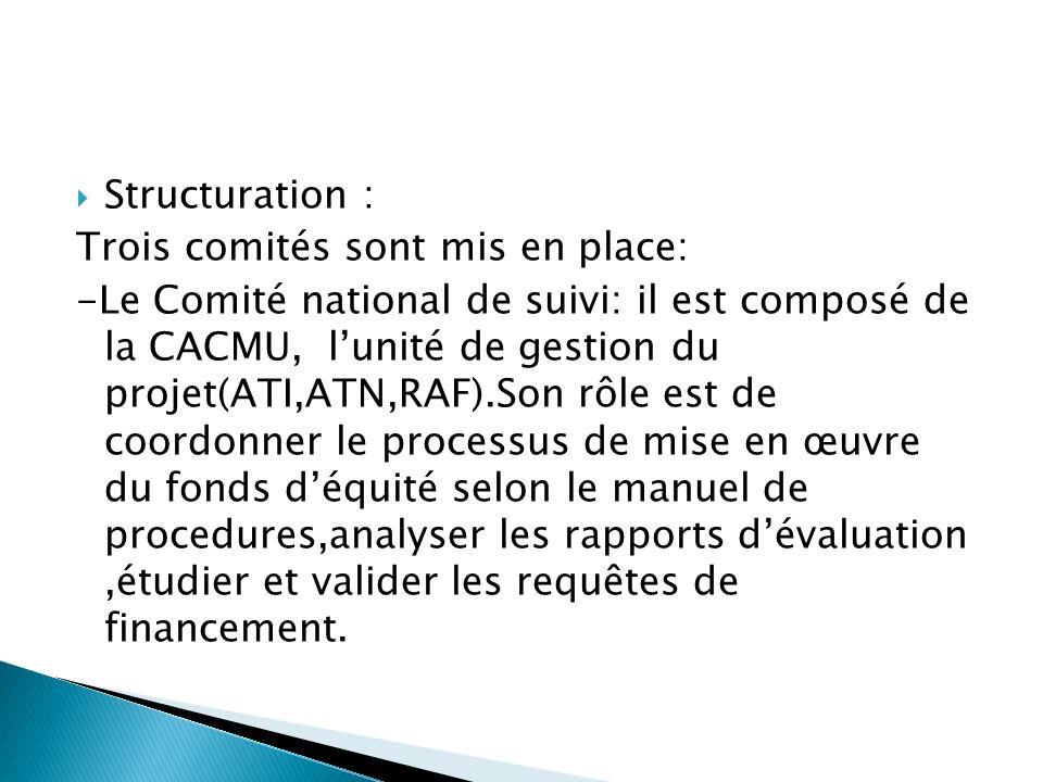 Structuration : Trois comités sont mis en place: -Le Comité national de suivi: il est composé de la CACMU, lunité de gestion du projet(ATI,ATN,RAF).Son rôle est de coordonner le processus de mise en œuvre du fonds déquité selon le manuel de procedures,analyser les rapports dévaluation,étudier et valider les requêtes de financement.