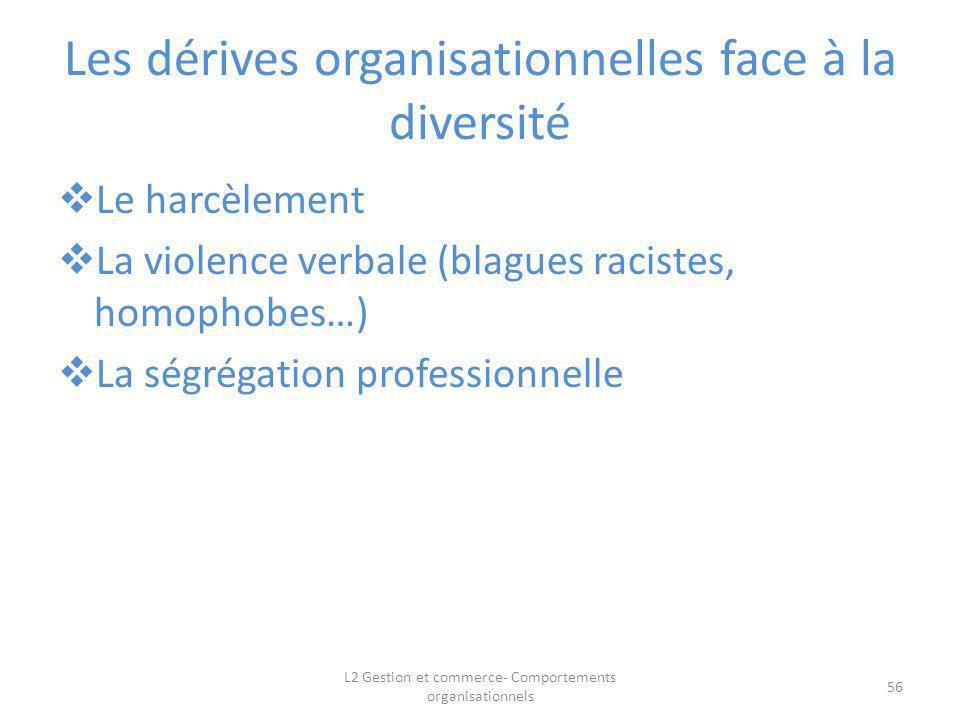 Les dérives organisationnelles face à la diversité Le harcèlement La violence verbale (blagues racistes, homophobes…) La ségrégation professionnelle 5