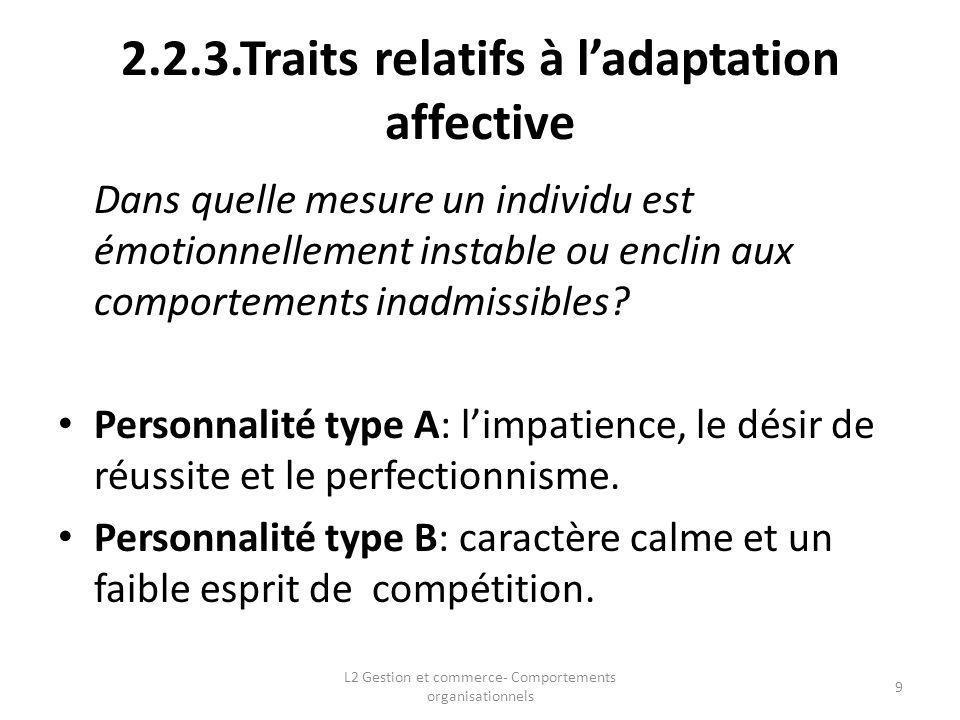 2.2.3.Traits relatifs à ladaptation affective Dans quelle mesure un individu est émotionnellement instable ou enclin aux comportements inadmissibles?