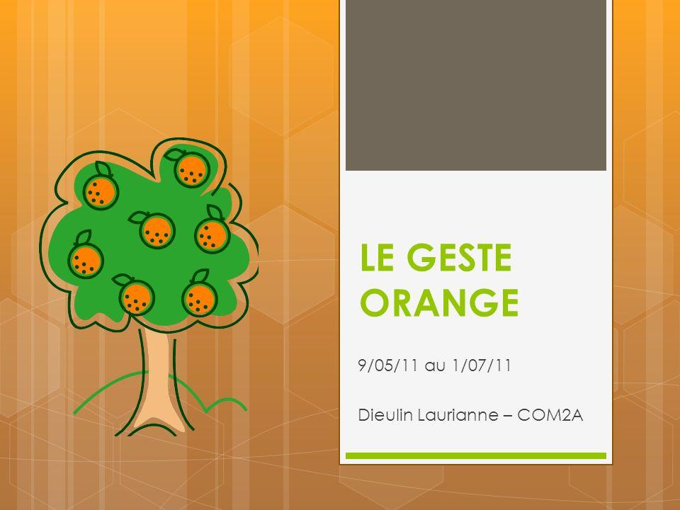 LE GESTE ORANGE 9/05/11 au 1/07/11 Dieulin Laurianne – COM2A