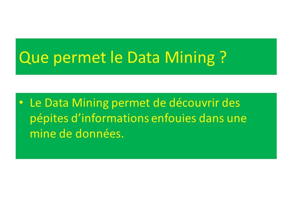 Que permet le Data Mining ? Le Data Mining permet de découvrir des pépites dinformations enfouies dans une mine de données.